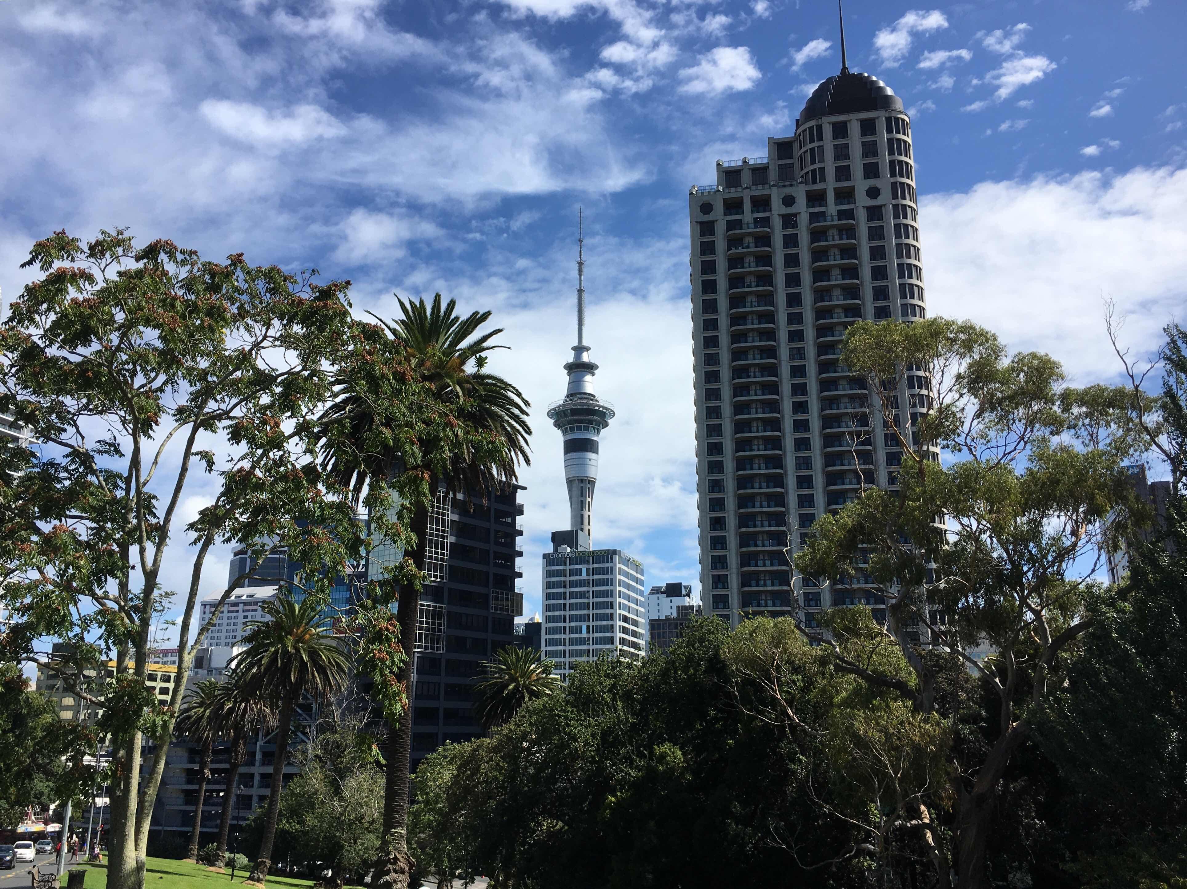 Sky Tower Auckland sky line