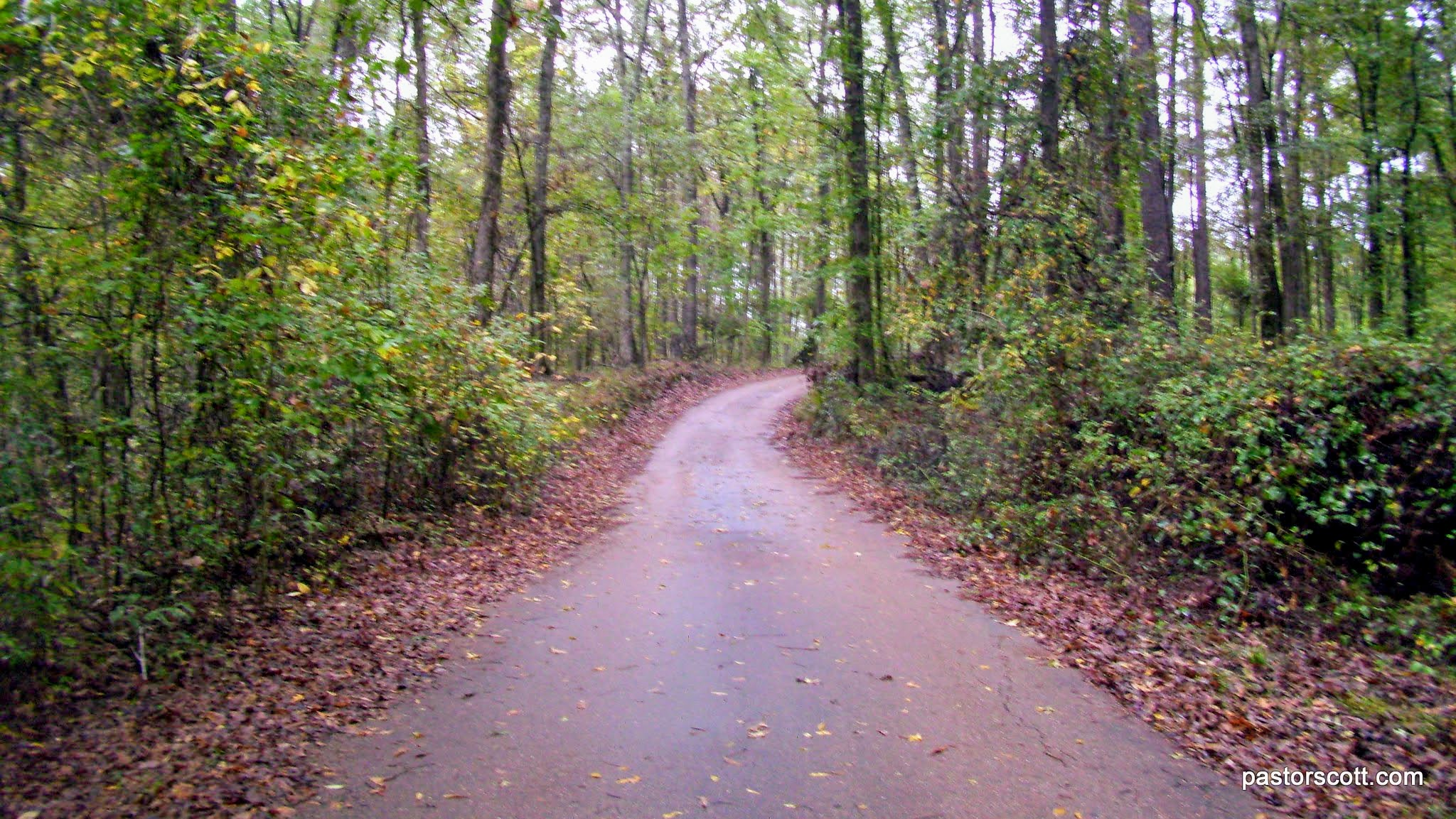 Campground Review Natchez State Park Natchez Ms Here
