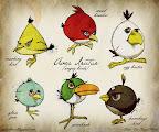 wallpaper android terbaru tahun 2012 gambar angry birds vintage icon angry birds gambar android angry birds terbaru angry birds wallpaper 2012 android gambar angry birds android 2012 gambar terbaru angry birds