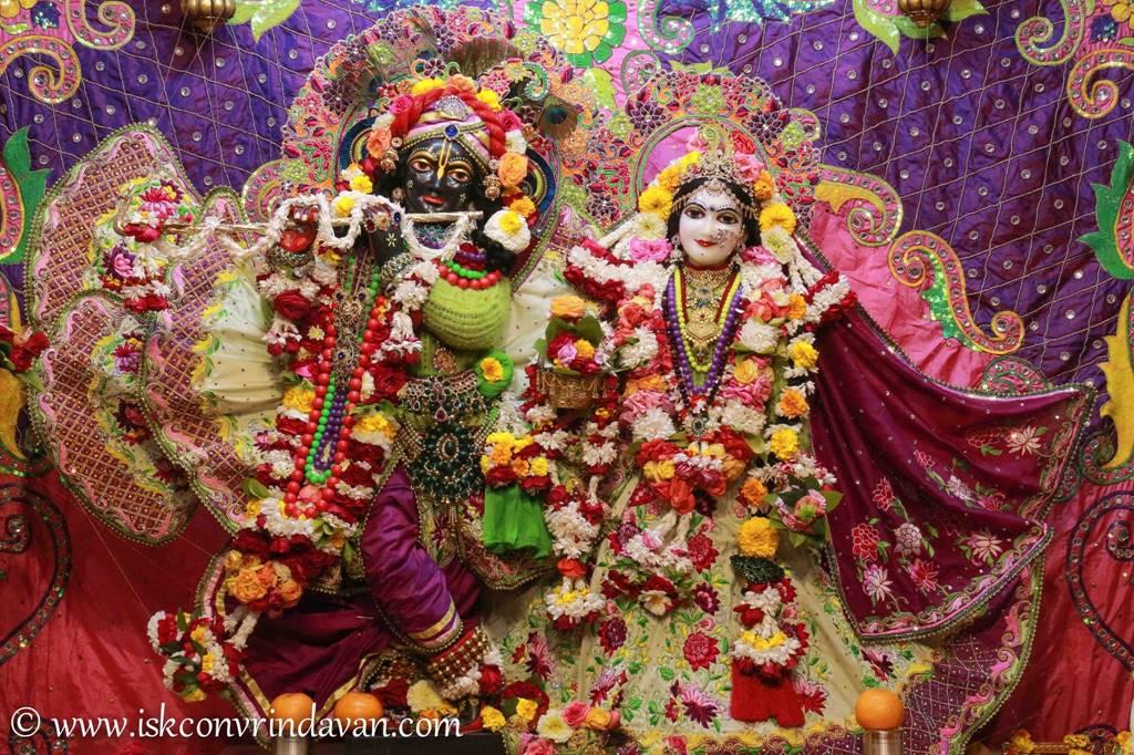 ISKCON Vrindavan Sringar Deity Darshan 14 Jan 2016 (11)