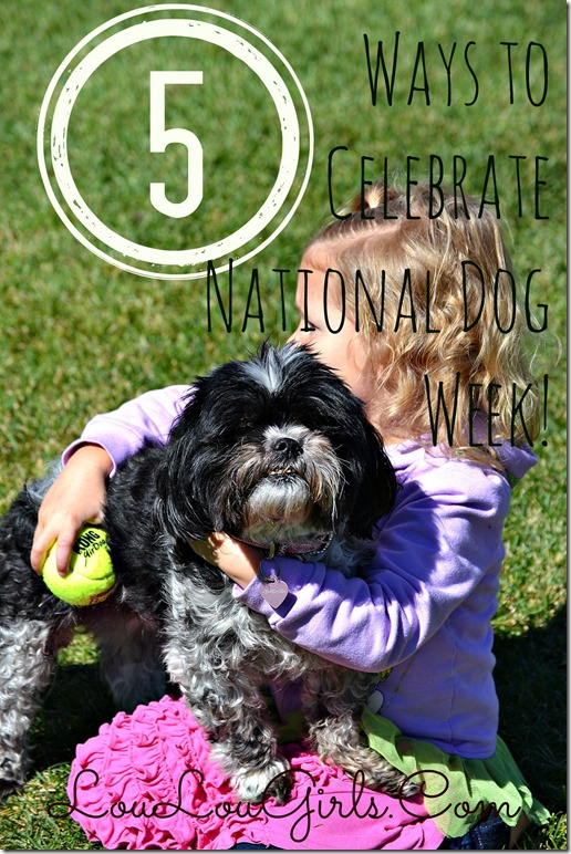 5-Ways-To-Celebrate-National-Dog-Week