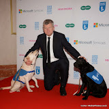 WWW.ENTSIMAGES.COM -     Adrian Chiles    at       Guide Dog of the Year Awards at London Hilton Park Lane London December 10th 2014Annual awards which celebrate the partnership between guide dogs and their owners.                                              Photo Mobis Photos/OIC 0203 174 1069