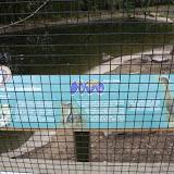 Zoo Snooze 2015 - IMG_7347.JPG