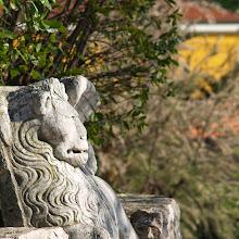 Popotniški spomladanski izlet, Istra 2007 - P0146434.JPG