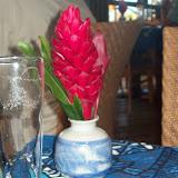 Hawaii Day 8 - 114_2199.JPG