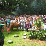 Rosenfest 2013
