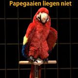 Papagaaien 2012