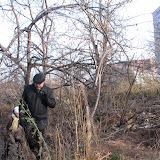 Экспедиция по дальним зарослям принесла плоды - найден взрослый дуб - в центре на заднем плане.