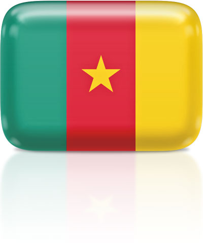 Cameroonian flag clipart rectangular