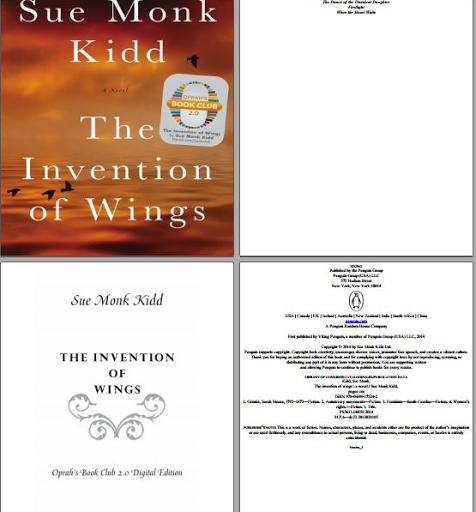 The Invention of Wings online free