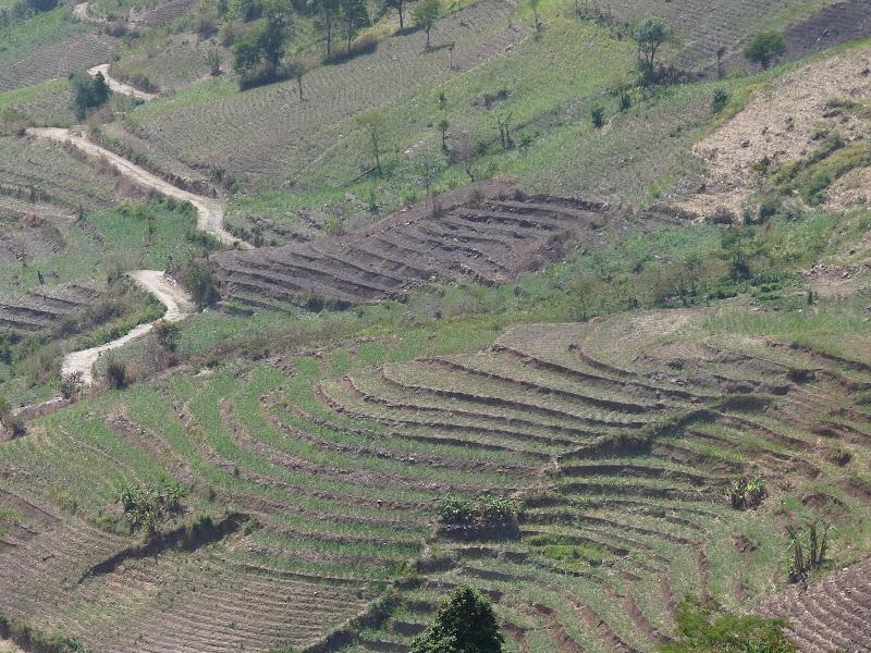 Chine: randonnée xishangbanna, région de Bada - Picture%2B808.jpg