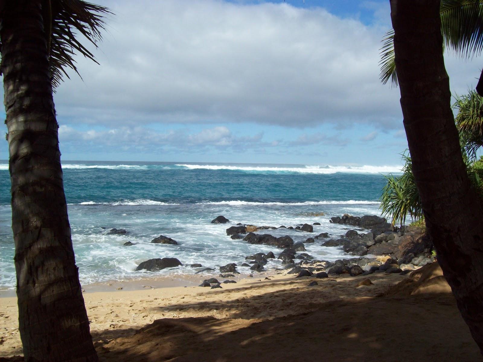 Hawaii Day 8 - 100_8176.JPG