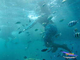 pulau pari 27-28 september 2014 pan 05