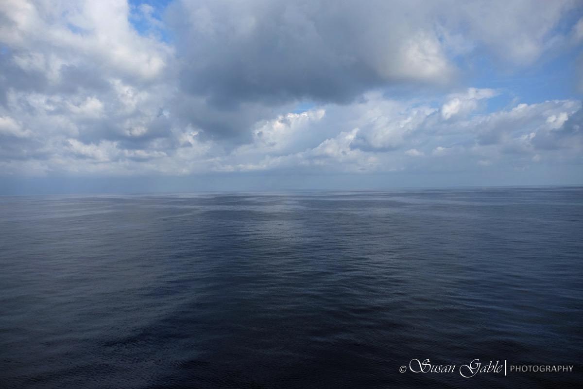 Sea 6 F2536