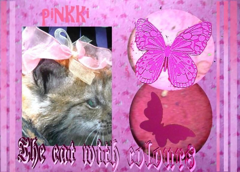 pinkki.jpg