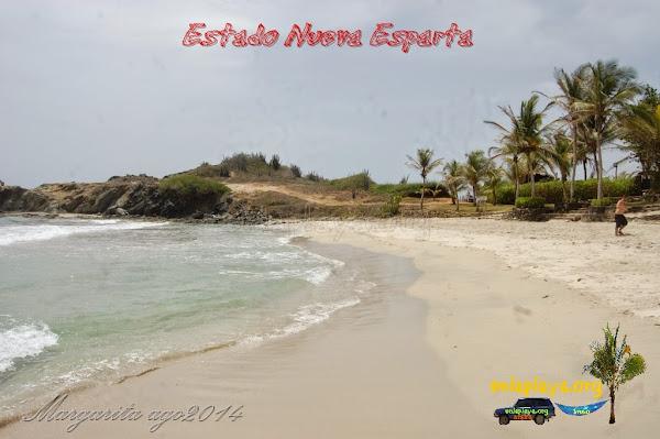 Playa Puerto Real NE038, Estado Nueva Esparta, Antolin del Campo