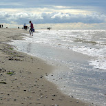 northern beach of Texel in Texel, Noord Holland, Netherlands