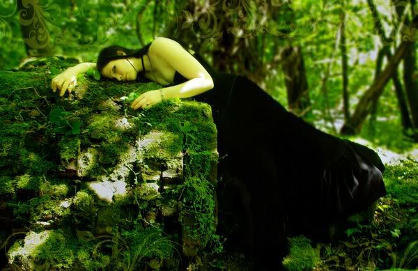 Sleeping In Magic Forest, Magic And Spells