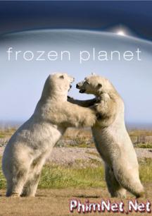 Phim Hành Tinh Băng Giá - Frozen Planet