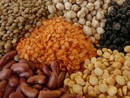 List of vegan protein sources