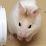 Kayleigh Jayne Brewer's profile photo