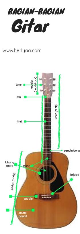 Bagian-bagian gitar