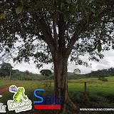 AVENTURA_NA_CACHEIRA_DO_CACAU
