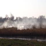 Winterkiekjes Servicetv - Ingezonden%2Bwinterfoto%2527s%2B2011-2012_42.jpg