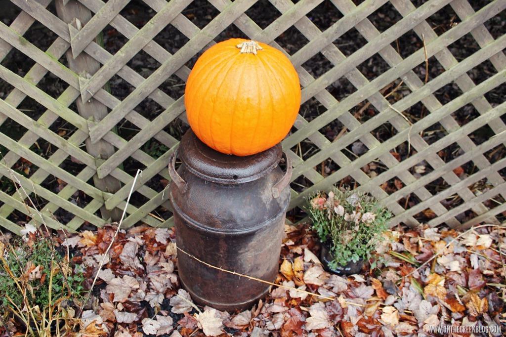 [pumpkin7%5B10%5D]