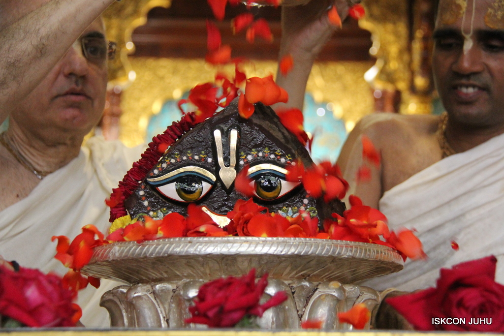 Govardhan Abhishek Darshan  At ISKCON Juhu on 31st Oct 2016 (65)