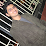 karthik ananth's profile photo