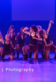 Han Balk Voorster Dansdag 2016-4057.jpg