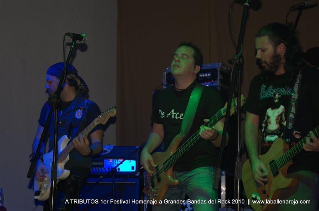 A TRIBUTOS 1er Festival Homenaje a Grandes Bandas del Rock 2010 - DSC_0119.jpg
