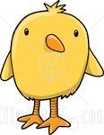 babybird_70293323