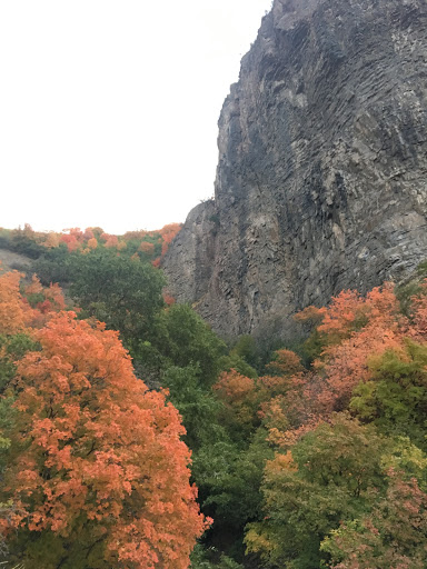 Dry Canyon in the Fall