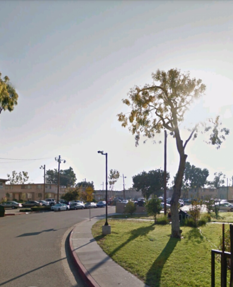 Housing Projects And Complexs And Apartments: Mar Vista