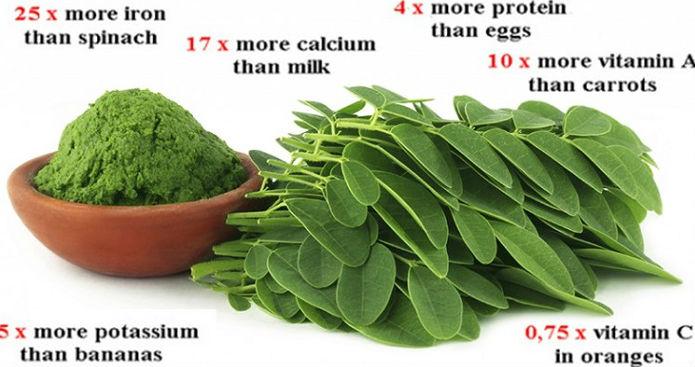 Buah-buahan Ketogenic