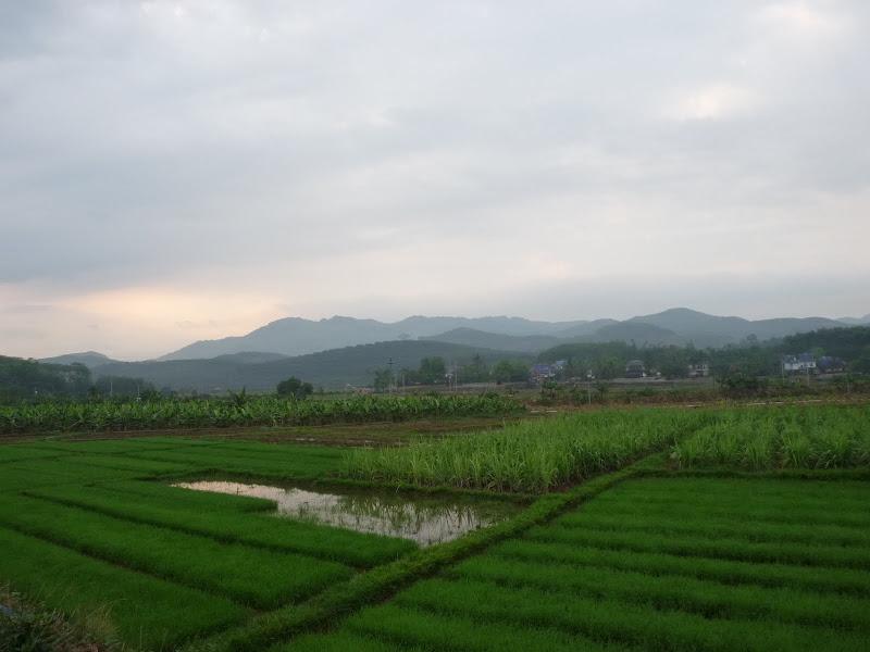 Chine . Yunnan..Galamba, Menglian Album A - Picture%2B253.jpg