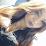 Lucero Mojica's profile photo