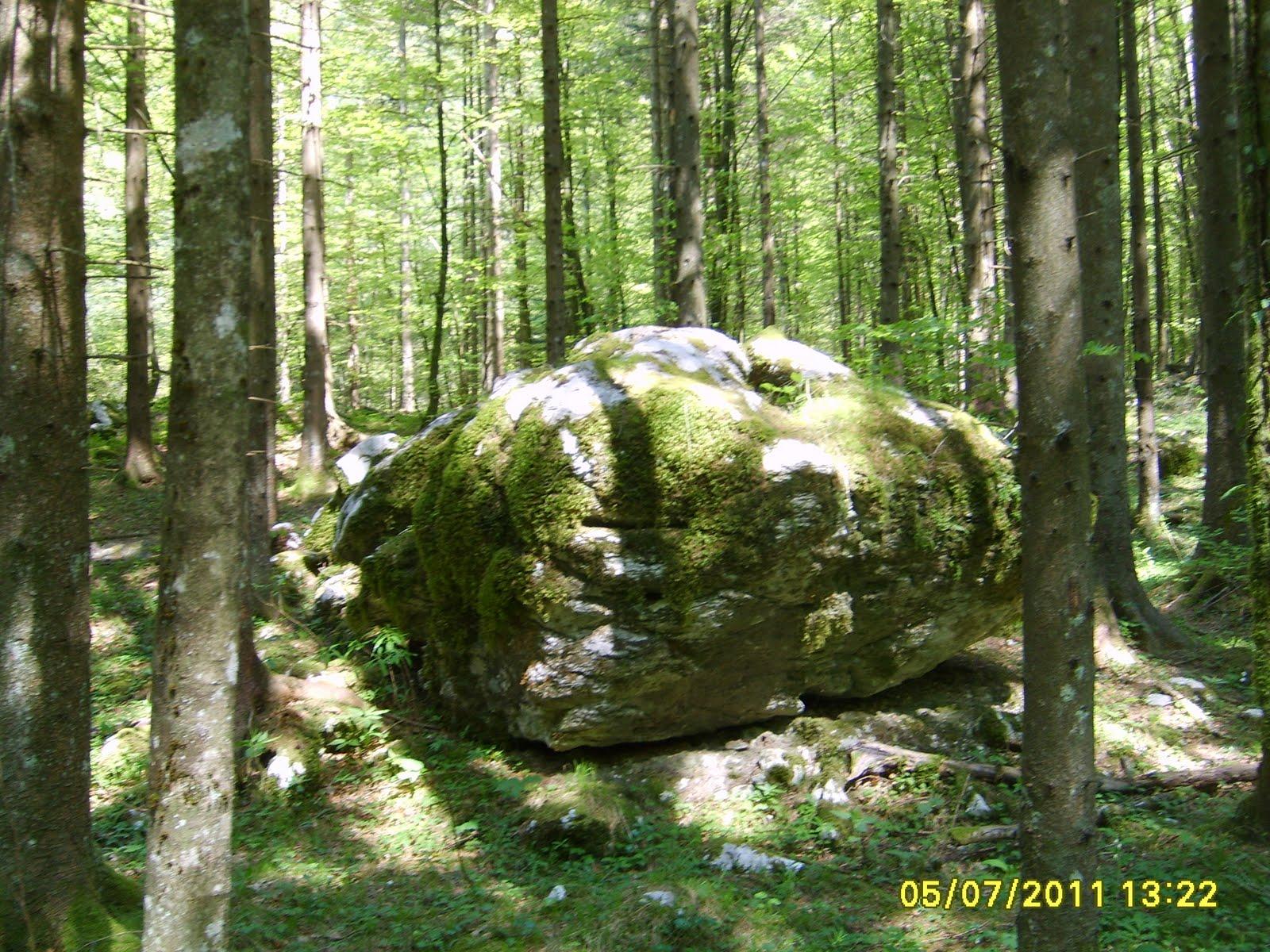 Kamniška Bistrica - S5007698.JPG