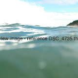 DSC_4735.thumb.jpg
