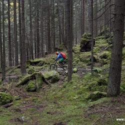 Murmeltiertrail Rosengarten 02.10.15-2161.jpg