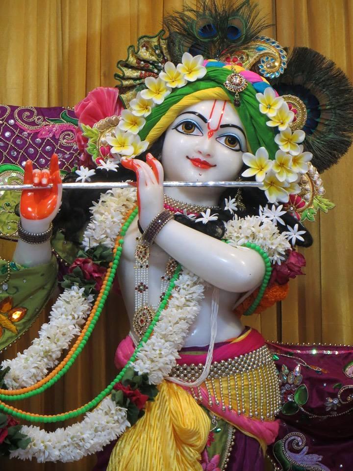 ISKCON Aravade Deity Darshan 07 Mar 2016 (10)