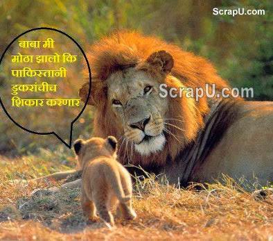 Baba mai bada ho jaunga to Pakistani pigs ka shikar karunga - Funny pictures