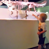 Houston Museum of Natural Science - 116_2704.JPG