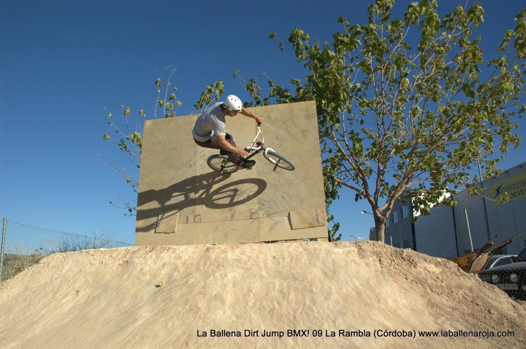 Ballena Dirt Jump BMX 2009 - BMX_09_0084.jpg