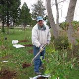 Hammo Planting - Shannon Schiesser - IMG_4890.JPG