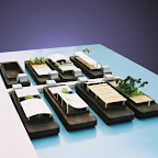 barge village concept