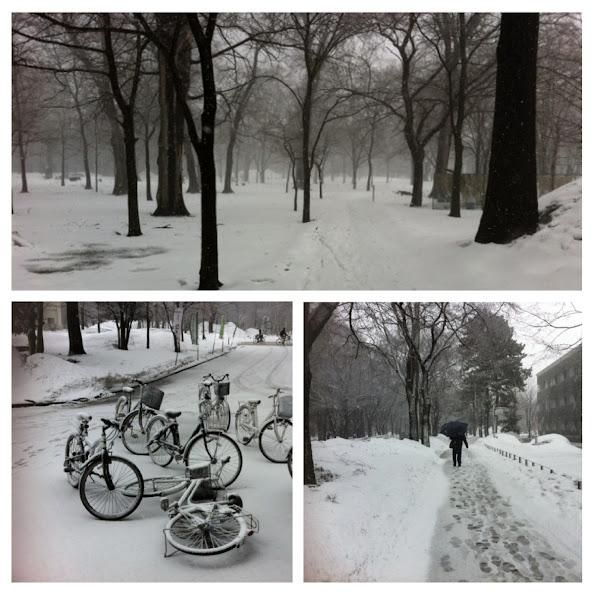 snowapril.jpg