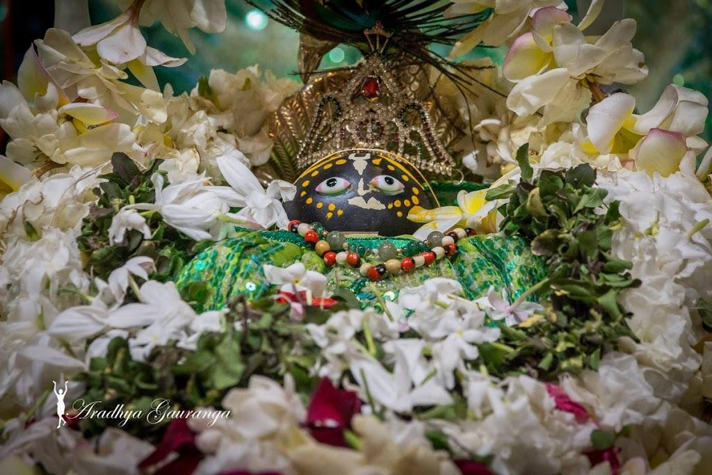 ISKCON Mayapur Deity Darshan 08 April 2016 (6)